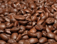 Freshly Roasted Coffee Bean Arabica